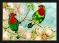 Finches, Red-Headed Parrot